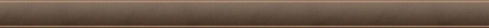 Brown Header Border